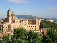 A Culinary Tour Of Marche