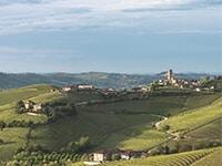A Culinary Tour Of Piedmont